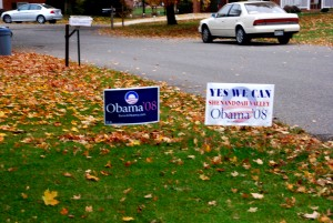 I put up campaign signs in my yard.